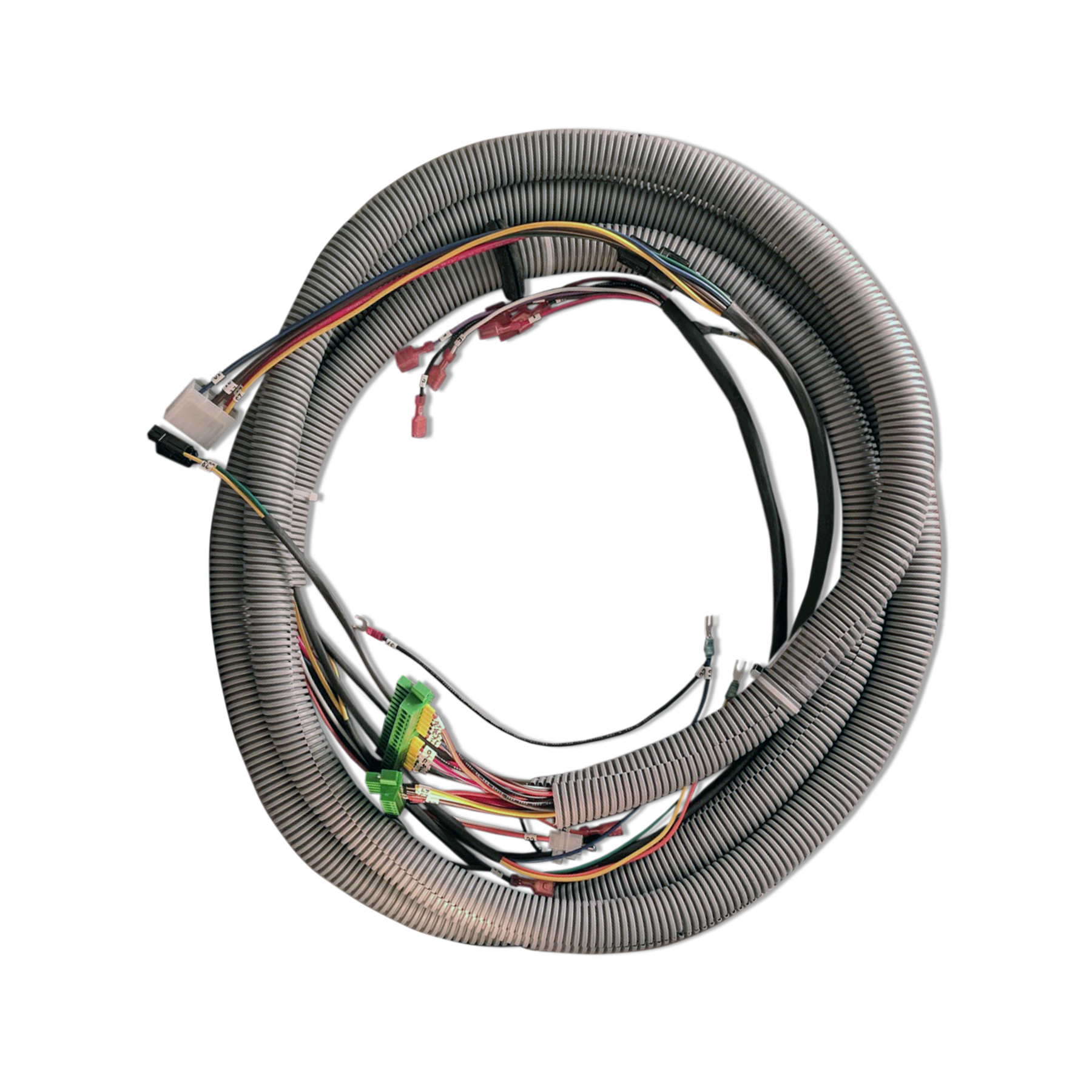 Circulation Pump and Burner Controller Wiring Harness, 12 ft.