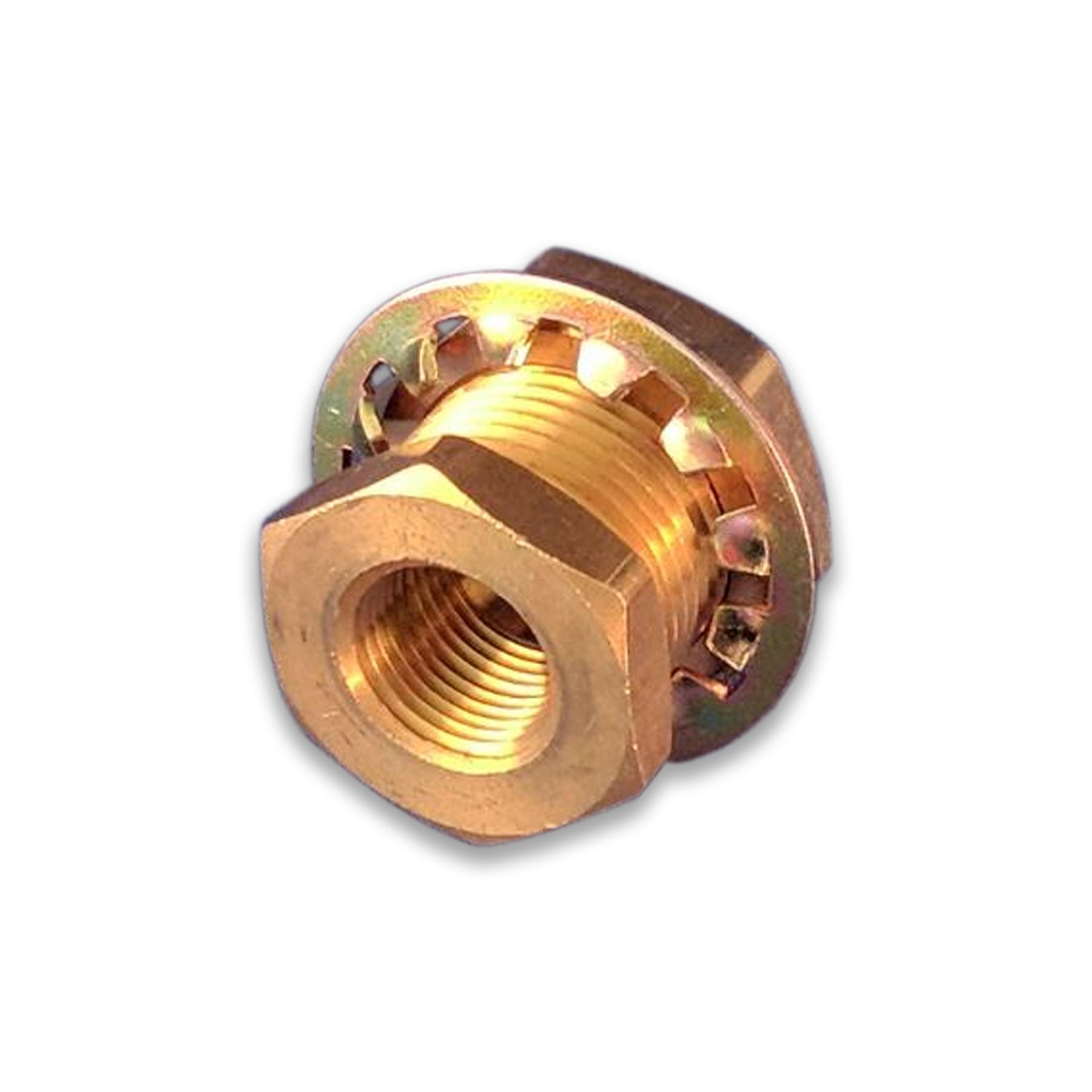 Brass Bulkhead Fitting, 3/8 in. x 3/8 in. (F) NPT